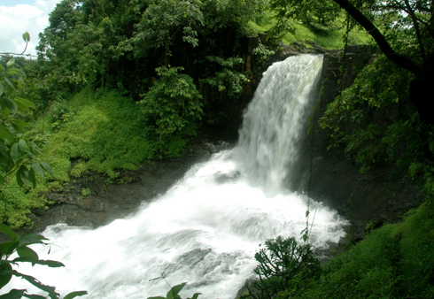Tamhini Ghat – Beauty of Nature